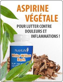 Aspirine végétale pour lutter contre douleurs et inflammations